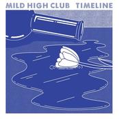 Mild High Club: Timeline