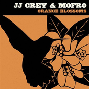 JJ Grey: Orange Blossoms