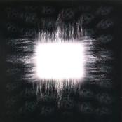 Ænima [Vinyl]