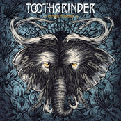 Toothgrinder: Nocturnal Masquerade