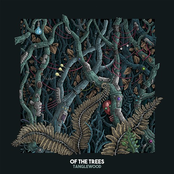 Of The Trees: Tanglewood