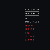 Calvin Harris - How Deep Is Your Love