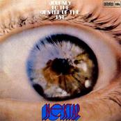 Nektar: Journey to the Centre of the Eye