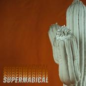 Wildermiss: Supermagical
