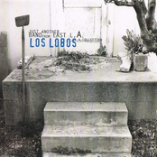 Los Lobos: Just Another Band From East L.A.: A Collection (disc 1)