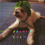 Album cover of Zentropy, by Frankie Cosmos