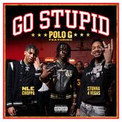 Go Stupid