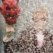 Ty Segall: Ty Segall