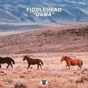 Fiddlehead: USMA