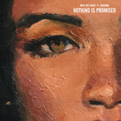 Nothing Is Promised - Single