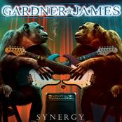 Janet Gardner: Synergy