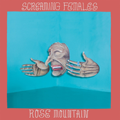 Screaming Females: Rose Mountain