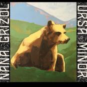 Nana Grizol: Ursa Minor