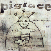 Pigface: The Best of Pigface: Preaching to the Perverted (disc 1)