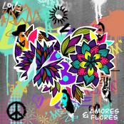 Amores E Flores