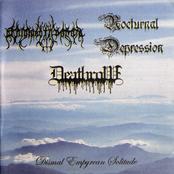 Dismal Empyrean Solitude (Split)