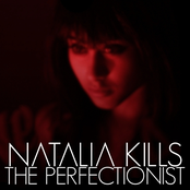 The Perfectionist - Leaks