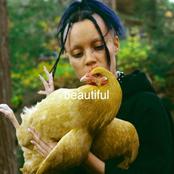 BigKlit: Beautiful