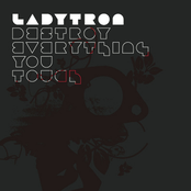 Destroy Everything You Touch