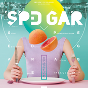 SPD GAR