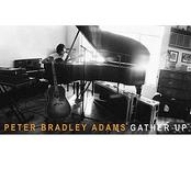 Peter Bradley Adams: Gather Up