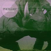 Triceratops - Single
