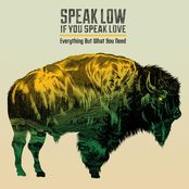Speak Low If You Speak Love: Everything but What You Need