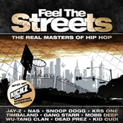 Feel The Streets (The Real Masters Of Hip Hop)