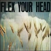 The Untouchables: Flex Your Head