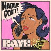 Natalie Don't (Punctual Remix)