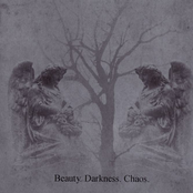 beauty, darkness, chaos
