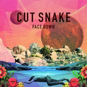 Cut Snake: Face Down
