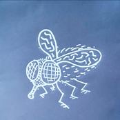 Flies - Single