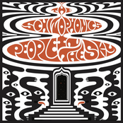 The Schizophonics: People in the Sky