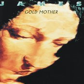 James ~ Gold Mother