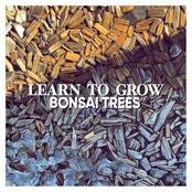 Bonsai Trees: Learn to Grow