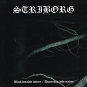 Black Desolate Winter / Depressive Hibernation