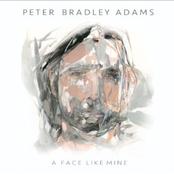Peter Bradley Adams: A Face Like Mine