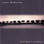 James Mcmurtry: Saint Mary Of The Woods