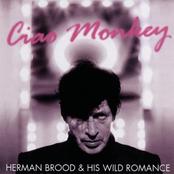 Ciao Monkey