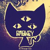 Radkey: No Strange Cats...P.A.W