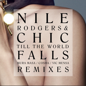 Nile Rodgers: Till The World Falls (Remixes)