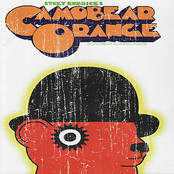Camobear Orange DVD/CD
