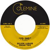 Delvon Lamarr Organ Trio: Fo Sho