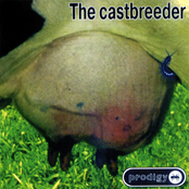 The Castbreeder