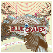 Blue Cranes: Homing Patterns