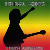 Tribal Seeds: Original