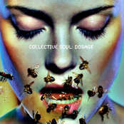 Collective Soul: Dosage