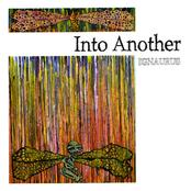 Into Another: Ignaurus