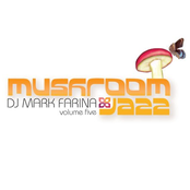 Mushroom Jazz Volume Five
